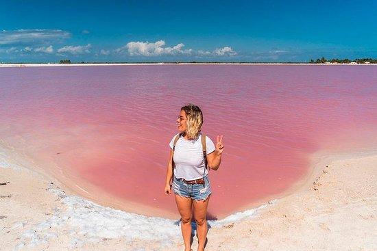 Tour mágico em Las Coloradas - Lagoa...