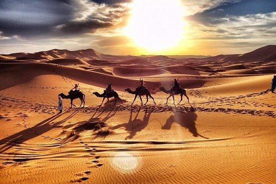 Excursión de 3 días al desierto desde...