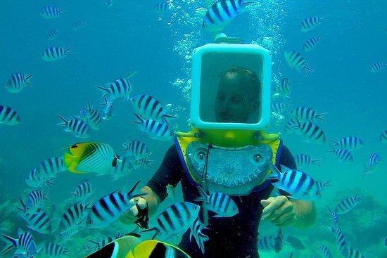 Tour prive: Aqua Safari plongée sous...