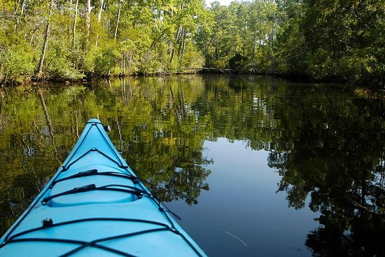Kitty Hawk Maritime Forest Kayak Tour