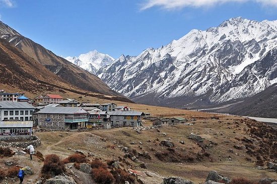 Langtang Valley Trek 8 días