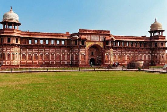 Bilde fra Delhi tur med Taj Mahal i 03 dager
