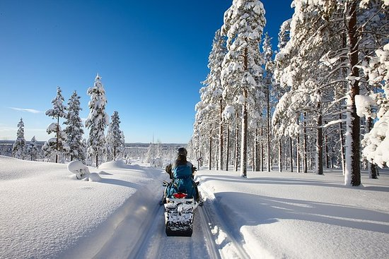 2h30 Snowmobile Guided Tour/Rental All inclusive 1 hour drive from Montreal Resmi