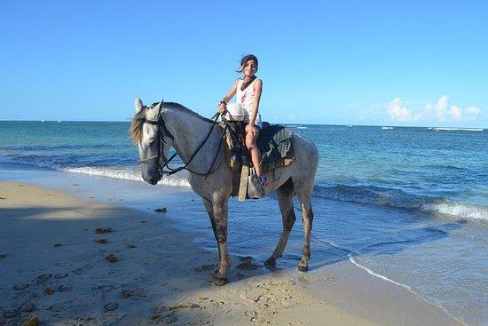 Horseback Ridding Punta Cana - Beach & Tropical Jungle
