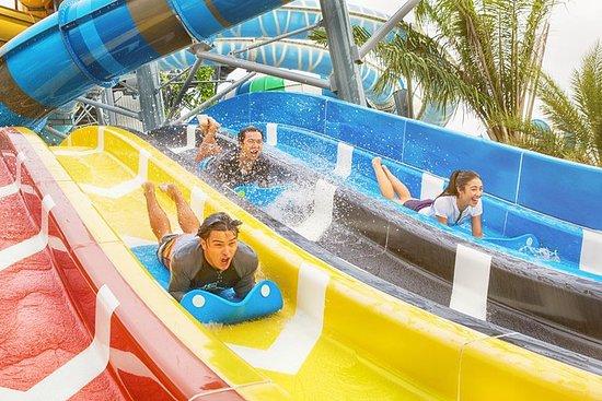 Kids Favorite: Von Bangkok nach Pattaya...