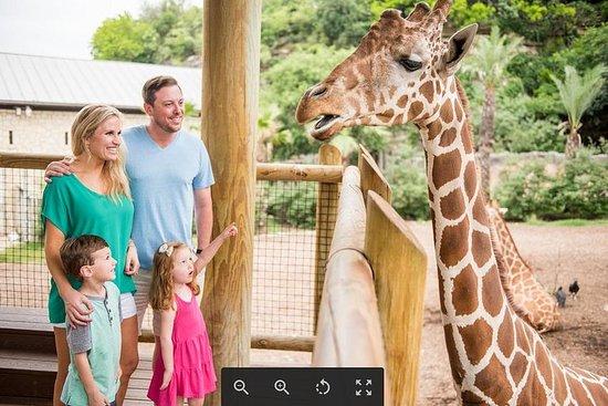 Skip the Line: San Antonio Zoo...