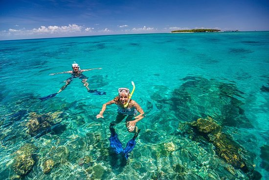 Green Island Discovery Including Glass Bottom Boat Tour Departing...