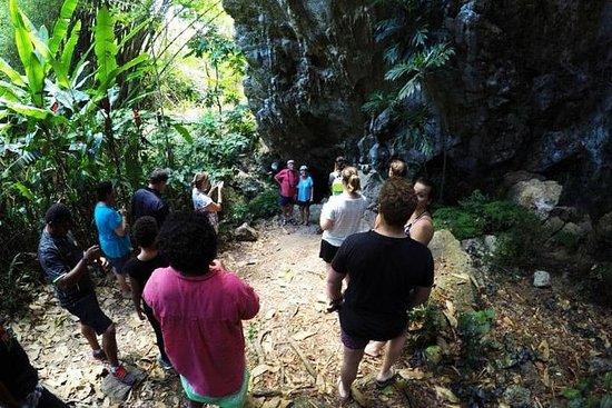 食人洞穴之旅,參觀斐濟村莊,參加卡瓦儀式