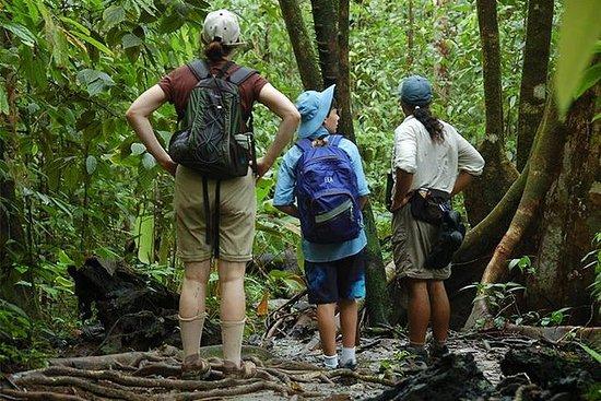 Corcovado National Park: 3 days / 2...