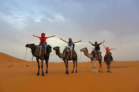 Excursão noturna no deserto para...