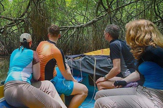 Madu River Safari Balapitiya...