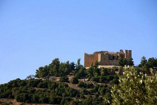 Amman Jerash och Ajloun Castle Day Trip