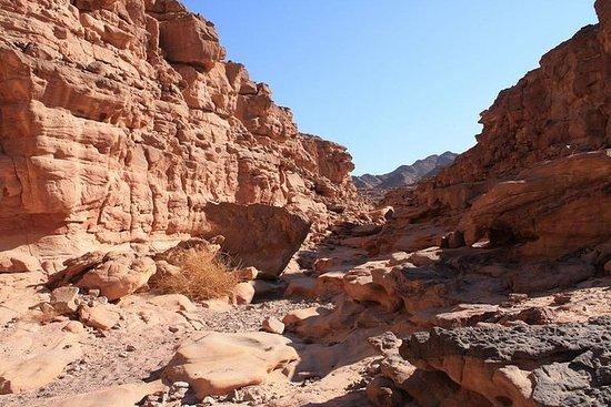 Le Canyon Coloré / Canyon Blanc De...