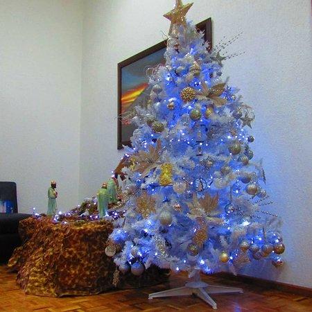 Precioso el árbol navideño
