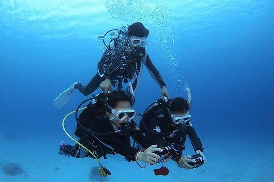 【Okinawa / Kerama】 Mergulho introdutório 2 mergulhos e snorkeling com...