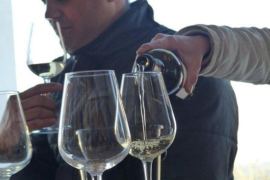セジンブラ、アラビダ、セトゥーバルへの友人と家族のプライベートツアー+ワイン…
