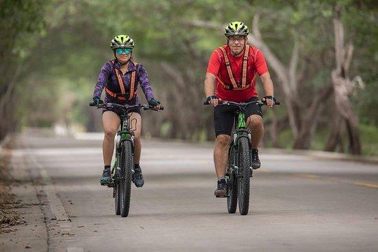 2 jours à vélo: à vélo sur la côte pacifique