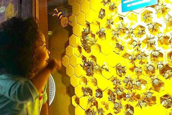 Admission Ticket - City of Bees - Apiário Embu