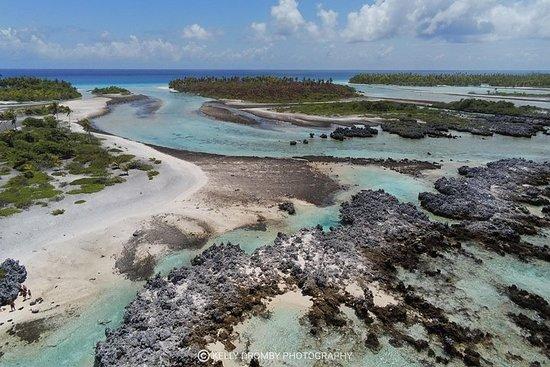 Reef Island Tour