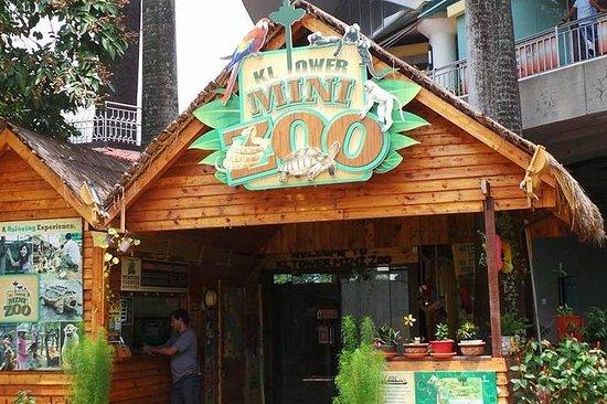 Kl Tower Mini Zoo Kuala Lumpur Tickets Tours Tripadvisor