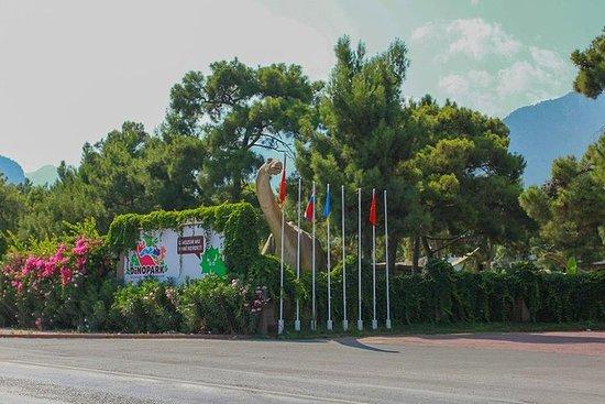 Billet coupe-file: billet d'entrée au Dinopark Antalya