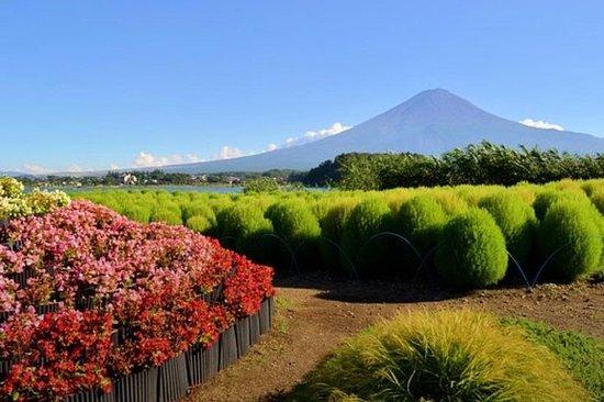 Excursion d'une journée en voiture privée au MT Fuji
