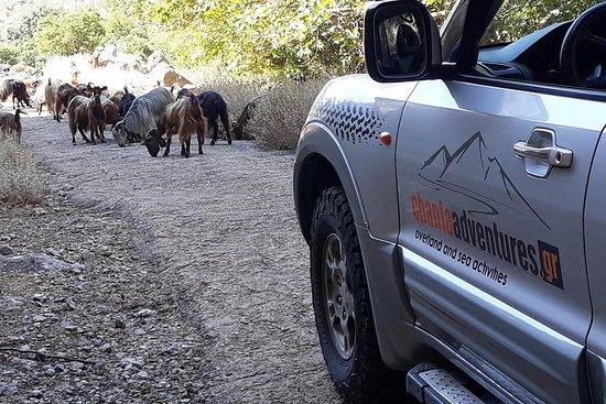 Luxus-Jeep-Safari - Private Tour