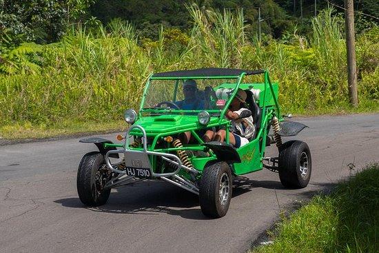 Soufriere Safari Buggy Tour