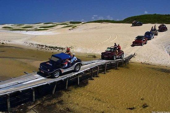 Buggy Ride - Genipabu + Côte Nord à...