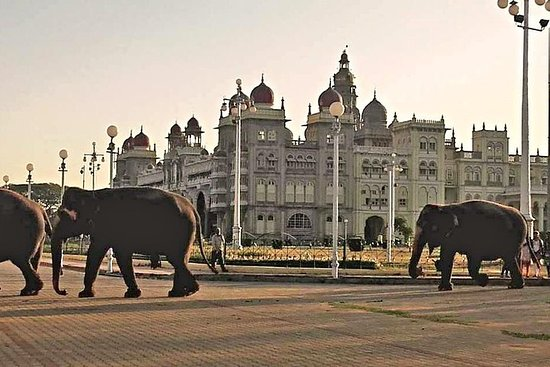 Heritage Tour durch Mysore...