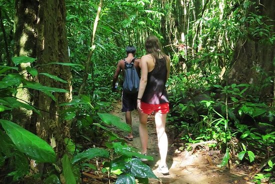 Safari Khao Sok Jungle de 2 días desde Krabi