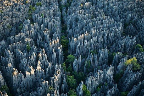 1 Tag Steinwald & Jiuxiang Höhle Tour