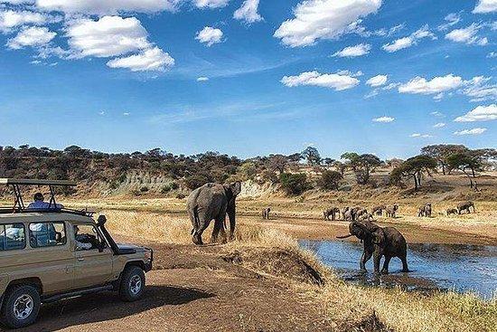 Private 9 Days Discover Kenya Safari