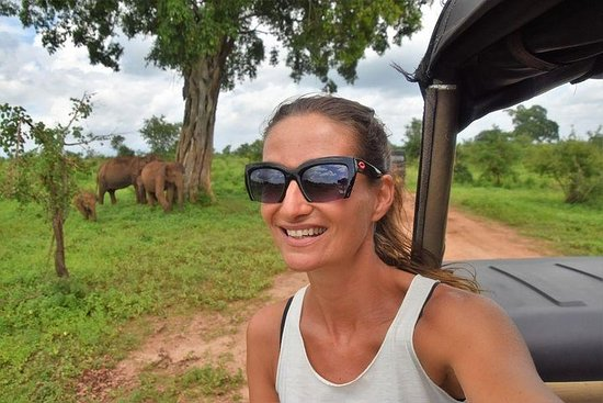 Udawalawe National Park Safari Photo