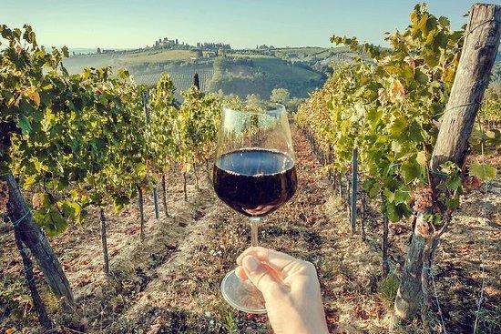 Vine af Toscana og Cinque Terre (4...