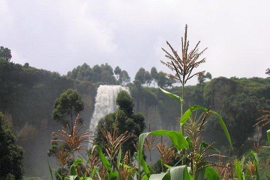 3 dagar Safar till Sipi Falls