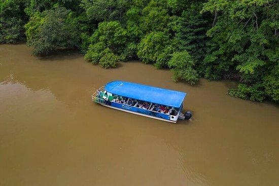 Safari en bateau à Palo Verde plus...