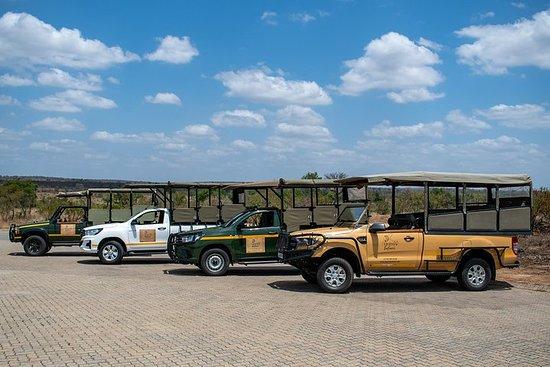 Dia Inteiro Kruger Safari
