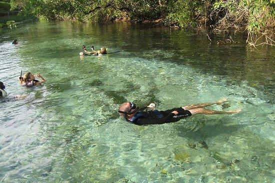 6-dagers Pantanal og Bonito Experience