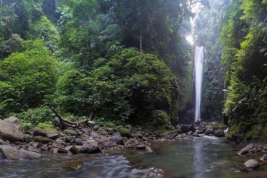 Dumaguete Casaroro Falls