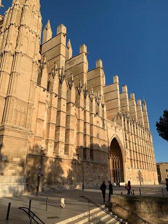 Terrazas De La Catedral De Palma Palma De Mallorca 2020