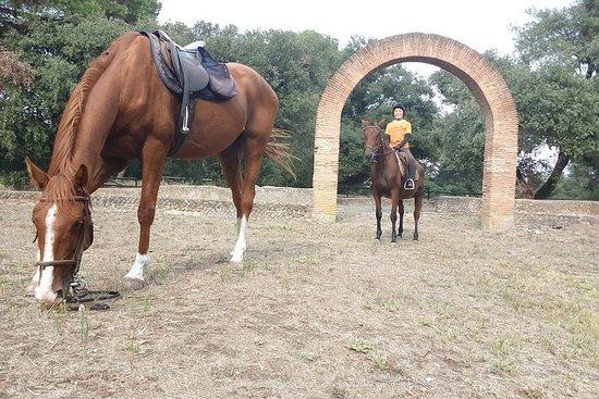 Paardendag in het oude Rome