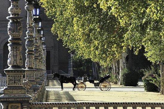 Paseo en carruaje tirado por caballos...