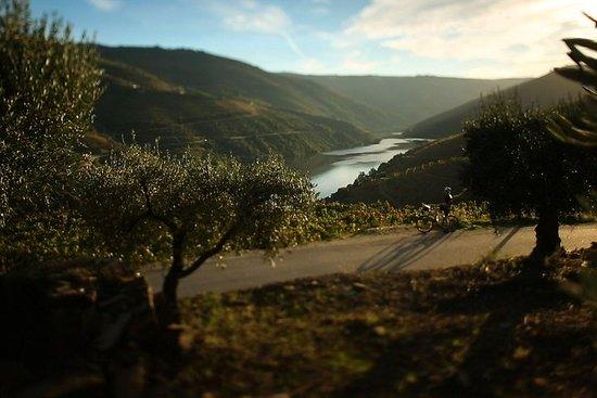 La charmante visite à vélo du Douro