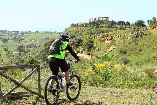古希臘騎自行車