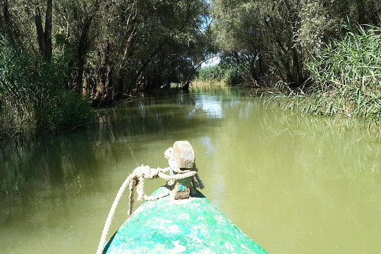 Private 3-Tages-Tour Donaudelta...