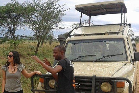 4 Nights 5 Days Camping Safari Itinerary Photo