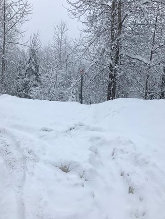 SNOW ! SNOW