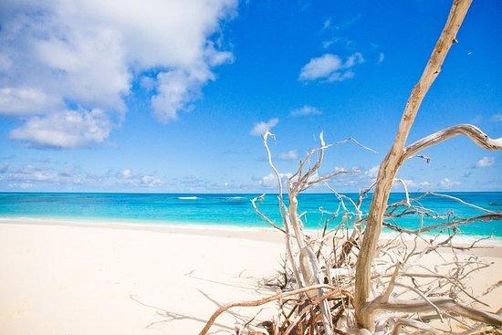 Magawish and Giftun Islands Full-Day...