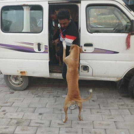 Noida, Indien: Our vital work